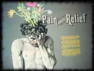 Pain and relief